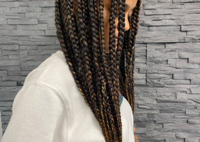 Braids by Hairseason
